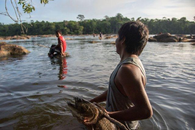Au cours d'une pêche à la nivrée sur la Camopi, ce collégien a harponné une prise de choix : un aymara
