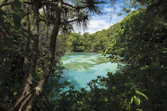 L'aquarium naturel, au sud de Tadine, sur la côte Ouest de Maré.