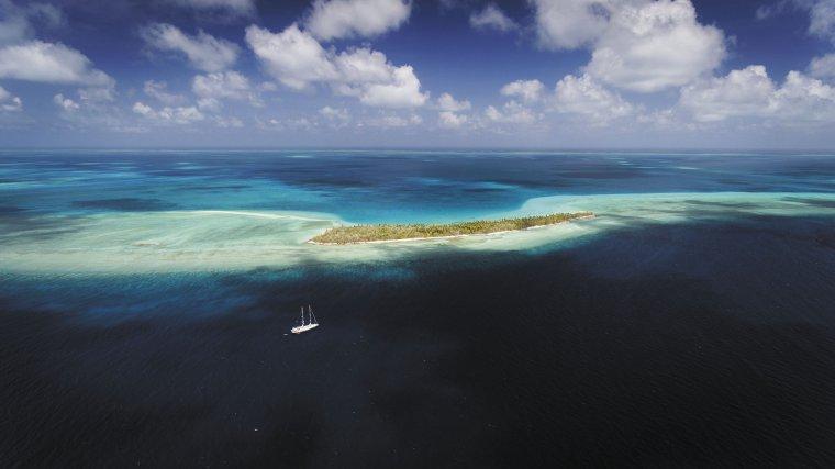 Tara sur l'atoll de Teirio, dans la république de Kiribati, située entre Hawaï et la Polynésie française.