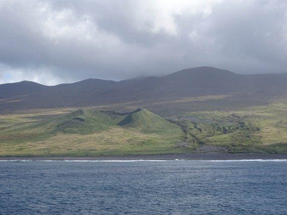L'île aux Cochons  -  TAAF
