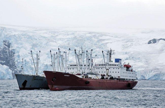 Navire frigorifique grec et russe dans la baie de la Découverte en Antarctique. Greenpeace demande à l'industrie de la pêche de s'engager à arrêter la pêche au krill, essentiel à l'alimentation des animaux des eaux polaires, dans toute la zone Antarctique. Mars 2018. Photo de Paul Hilton /Greenpeace.