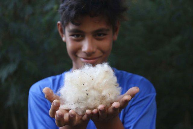 Hitapu vient de ramasser du coton. Les habitants s'en servent pour réaliser des petits coussins
