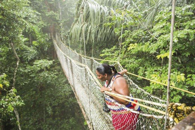 Parcours de canopée dans un ecolodge situé dans la réserve d'Iwokrama au Guyana. Avril 2014.