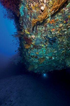 Une photo prise à 70 mètrres de profondeur au niveau d'un des nombreux surplomb de la base du second tombant.