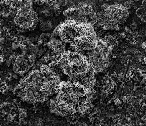 Corrosion d'une plaque d'acier immergée en eau de mer. On peut également observer en surface des produits de corrosion - combinaison entre métal (fer) et non métaux (oxygène, …). Grossissement x 1000. ©L3MA