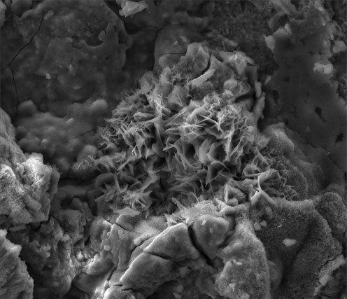 Corrosion d'une plaque de fer en ambiance équatoriale. Les cristaux observables en surface sont des hydroxydes de fer autrement appelés «rouille». Grossissement x 3000. ©L3MA