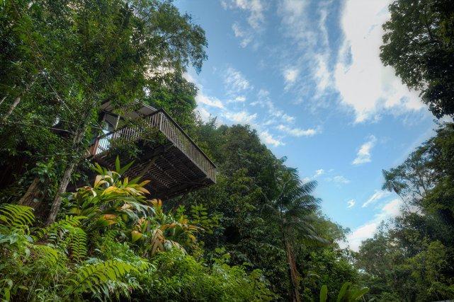 L'écolodge de Bergendal est situé au bord du fleuve Suriname, il propose de nombreux bungalows forestiers, dont certains surplombent la végétation d'une dizaine de mètres.