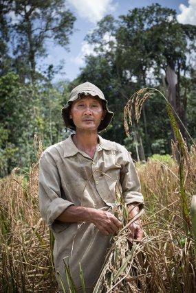 Cyrille Yang et sa famille ont fuit la Laos en 1976. En 1995, il suit son père en Guyane à Saül.