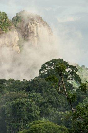 Pic Coudreau du sud (632m). À ne pas confondre avec son homonyme, le Pic Coudreau des monts Bakkra situé bien plus au nord, ce relief tailladé d'une profonde crevasse, marque fièrement les sources du Marouini. Février 2013.