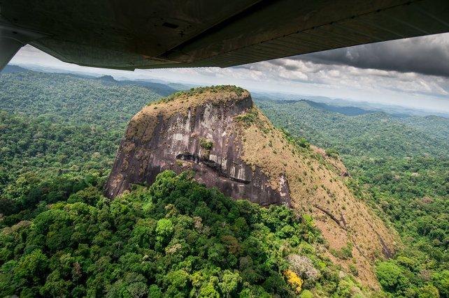 Tchoukouchipann (639m). Trônant au cœur des Tumuc-Humac, entre les Mitaraka à l'ouest et le Sommet en cloche à l'est, cet inselberg se distingue de tous les autres en Guyane par ses contours rugueux évoquant une sculpture monumentale mal dégrossie. Ses falaises massives semblent taillées à la serpe, profondément marquées de failles longitudinales et de coups de gouge. 13 septembre 2008