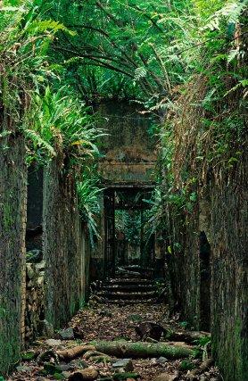Vestige du bagne sur l'île Saint-Joseph, au large de Kourou.