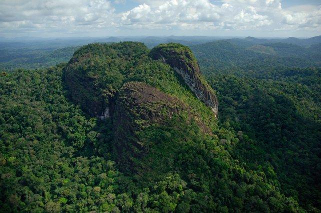 Les montagnes Tumucumaque désignent l'ensemble des inselbergs au nord du parc.