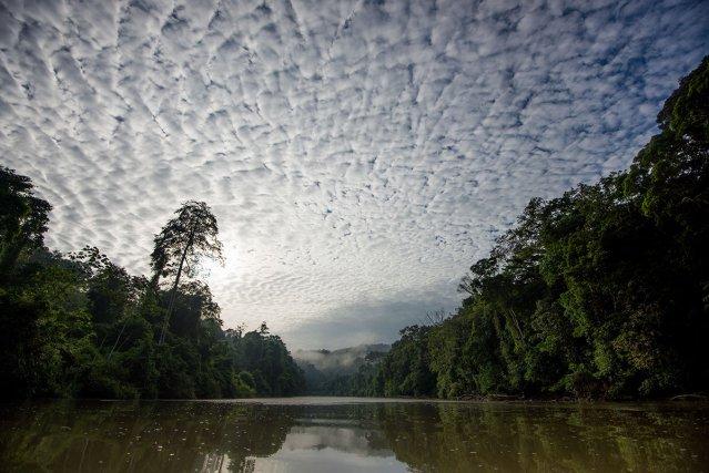 Lever du jour sur la rivière camopi