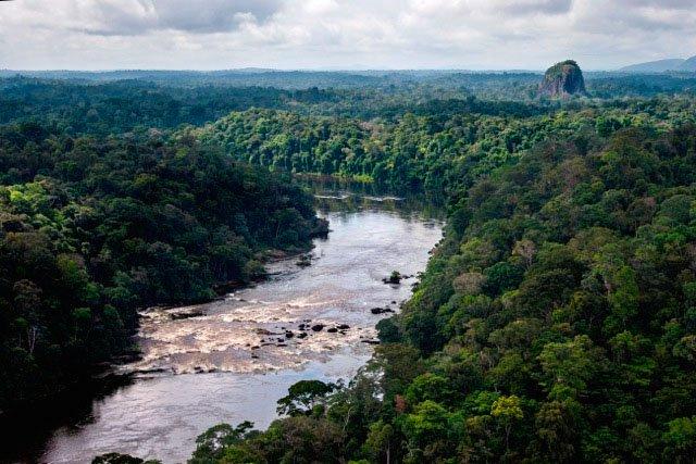 Rapides sur la rivière Gran Rio entre Djoemoe et Tafelberg, au cœur de la forêt tropicale humide.