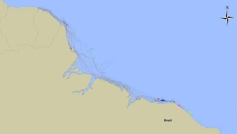Carte des trajets de 16 tortues vertes <i>(Chelonia mydas)</i> équipées de balises Argos dans le cadre du projet CARET 2.