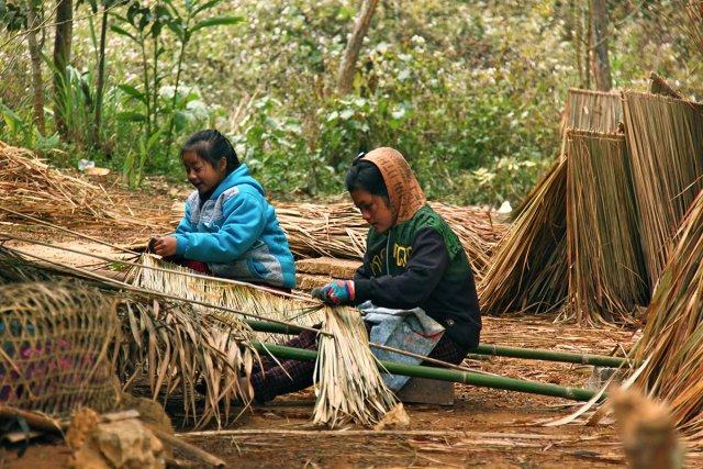 Les jeunes femmes du village préparent le toit des huttes