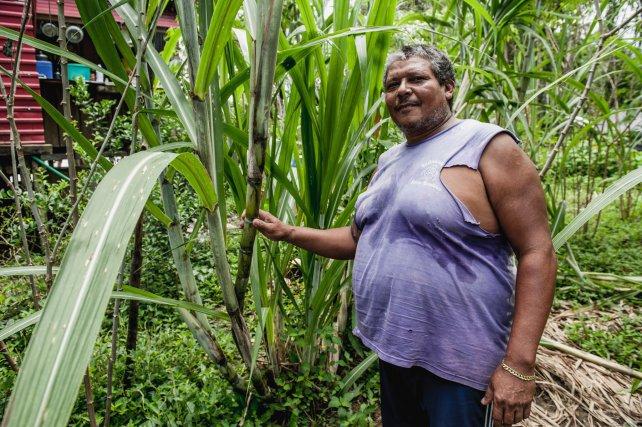 Après 40 ans à travailler comme garimpeiro, Joao cultive maintenant sa terre pour vendre sa production. Il était venu ici pour payer les études de ses enfants. Son fils a obtenu son diplôme de médecin en mai 2015 à Sao Luis.