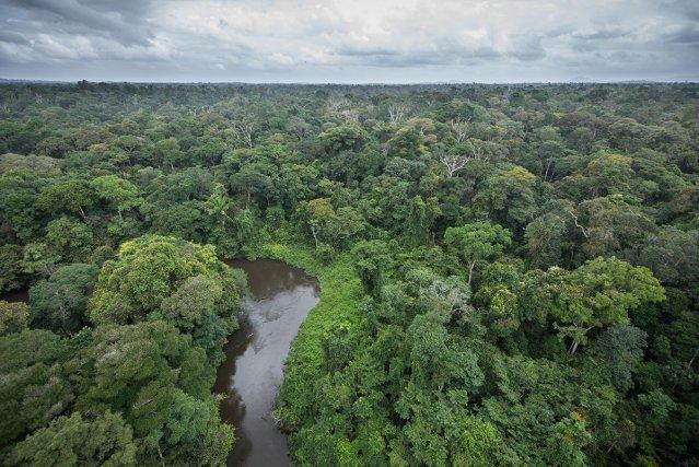 Vue aérienne de la Grande Waki en Guyane.