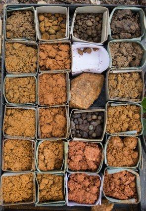 Échantillons de terre collectés dans le cadre du programme habitats sur la Grande Waki.