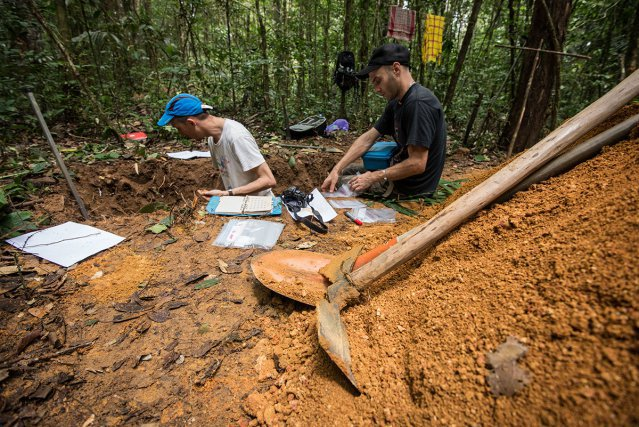 Agents de l'ONF décrivant les différents horizons du sol dans une fosse pédologique. à droite : échantillons de sol collectés pour analyse en laboratoire.