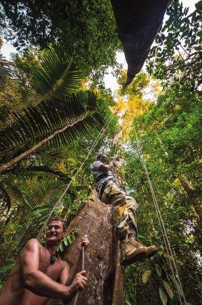 Camp Canopée, sur le fleuve Kourou, propose un carbet arboricole, un parcours en tyrolienne, et une plate-forme dominant la canopée, perchée à 36m. Une passerelle permet de rejoindre la seconde, à 42m.