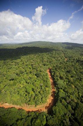 Vue aérienne de la Guyane.Piste forestière de Bélizon avec la montagne Maripa sur la gauche. Cette route ouverte en 1978 est à usage multiple, forestière, minier et touristique.Forêt domaniale de Bélizon aménagée par l'ONF, secteur forestier de Tibourou.