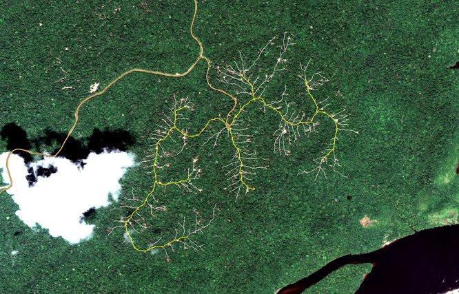 Suivi de la canopée en forêt exploitée – Image Pléiades du 4 octobre 2014, près de Saint-Georges. En forêt naturelle exploitée, la surveillance des impacts sur la canopée est une étape essentielle pour assurer la bonne mise en œuvre de l'Exploitation Faible Impact et des certifications de gestion durable des forêts. L'utilisation d'imagerie satellite à haute ou très haute résolution constitue une alternative pertinente aux relevés de terrain laborieux, imprécis et coûteux. Jusqu'en 2015, l'Office National des Forêts assurait un suivi opérationnel des exploitations forestières à partir d'imagerie SPOT 5, facilement accessible via la plateforme SEAS Guyane. Suite au désorbitage de ce satellite, de nouvelles solutions sont recherchées parmi les nouveaux capteurs optiques (Pléiades, SPOT6/7, Sentinel…), et du côté d'autres technologies insensibles ou plus souples face aux contraintes d'ennuagement particulières aux conditions tropicales (radar, lidar…).  Image Pléiades fournie par la station SEAS-Guyane, © CNES 2014, Distribution AIRBUS D.S. / Spot Image S.A., France, tous droits réservés