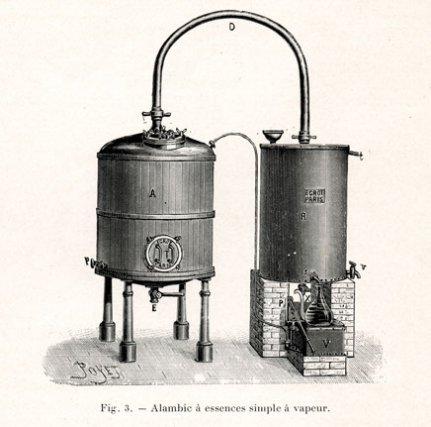 Dans les années 1920, l'histoire du bois de rose est marquée par la concurrence entre les sociétés Antoine Chiris en Guyane de 1913 à 1917. 23 octobre 1920