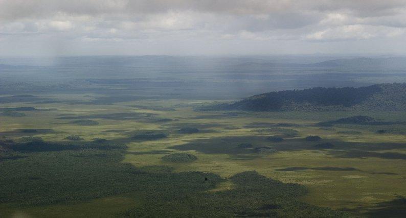 Les marais de Kaw
