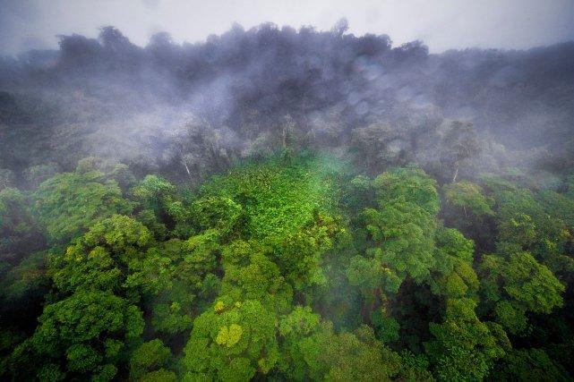 Vue sur le mont Itoupé depuis un hélicoptère.