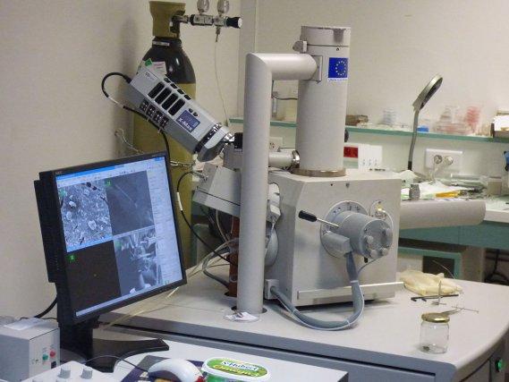 Microscope Electronique à Balayage (MEB) de l'Université des Antilles - Guadeloupe. Cet outil permet l'analyse des abailles de biosurveillance - Programme FCR - 2016 VA/NBC/INTEC