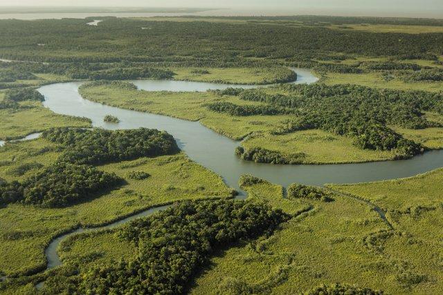 Vue aérienne de la crique Coswine au niveau du camp de Coswine.