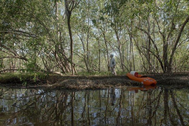 Les gardes de la réserve naturelle de l'Amana étudient et surveille le site chaque semaine lorsque celui-ci est accessible en canoe.