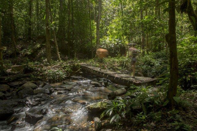 L'excursion jusqu'aux cascades de Gobaya Soula necessite un petit transport en pirogue et un court sentier. L'endroit est idéal pour un pique-nique.