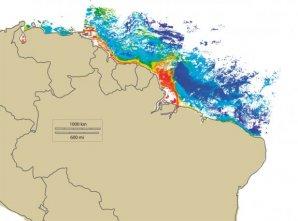"""L'image ci-dessous montre une synthèse de cinq images successives Seawifs (du 21 au 25 juillet 2007). Ces images sont acquises quotidiennement par la station de réception en """"Bande L"""" située à l'IRD à Cayenne. La plateforme, qui reçoit également des données  des satellites NOAA, s'inscrit dans un réseau mondial de stations appelé SEASNET qui permet d'observer les dynamiques océaniques à l'échelle planétaire. Si les données NOAA fournissent notamment la température de surface des océans, le satellite Seawifs possède quant à lui des capteurs capables de détecter la concentration en chlorophylle dans l'eau à partir de la turbidité de celle-ci. L'image ci-dessous met ainsi en évidence le panache amazonien en phase de rétroflexion (de juillet à décembre). La couleur noire indique la présence de nuages."""