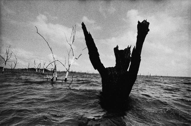 extrait du projet O lago do esquecimento, Tucurui/PA 2011
