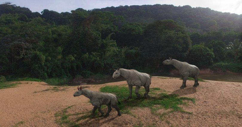 La Guyane actuelle offre des paysages analogues à ceux du passé lointain d'autres régions du globe. Des reconstitutions numériques de géants fossiles ont ainsi pu être incrustées dans un sous-bois près de Roura et sur la plage de Gosselin pour les besoins du documentaire Le Mystère des Géants perdus. Iciun groupe de trois balouchithères, des rhinocéros géants du Pakistan (30 millions d'années).