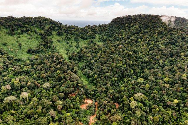 La piste qui mène de Saint-Laurent-du-Maroni au site du projet Montagne d'or.  Au loin, les reliefs des réserves biologiques de Lucifer & Dékou Dékou.