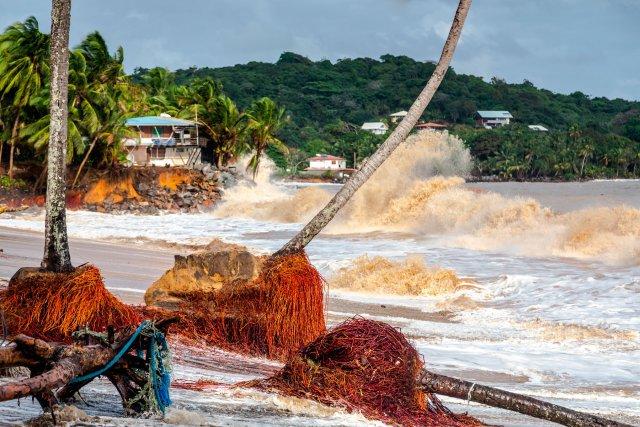Mardi 15 janvier 2013, Guyane, DOM. Depuis le lundi14 janvier 18h, météo france a énoncé un bulletin d'alerte rouge concernant les fortes marées qui vont déferler sur les côtes de Guyane. Le long de la route des plages, à Rémire Montjoly, deux famille ont du etre évacuées durant la nuit, leurs habitations étant menacées par des vagues de plus de 4 mètres. Ce mardi matin une partie de la route des plages était fermée à la circulation.