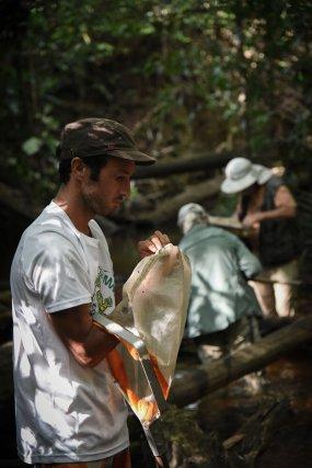 Eduardo Dominguez, spécialiste argentin des Ephéméroptères, et Simon Clavier, spécialiste des invertébrés aquatiques, à l'origine du programme DIAG, recherchent des individus sur la crique Maman Lézard.