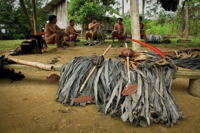 Flûtes ipilãylaãnga posées sur les capes en fibre de maho-cigare.