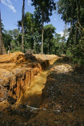 Canal de dérivation d'une nouvelle exploitation d'or alluvionnaire dans la zone des Abattis Cotticas (2007)