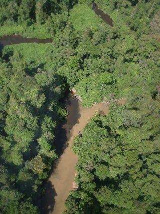 Turbidité liée à l'exploitation aurifère illégale dans une crique de la zone de St Elie (2004)
