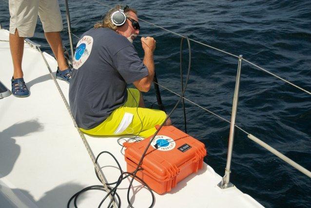 Mise à l'eau de l'hydrophone pour repérer les cétacés  Jeune cachalot âgé de quelques semaines. A la naissance, les petits mesurent près de 4 mètres et pèsent 1 tonne - Guyane, 1er juin 2012.