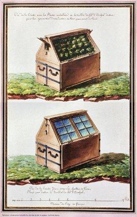 Paniers et caisse pour recueillir des plantes durant le voyage au XVIIe siècle.