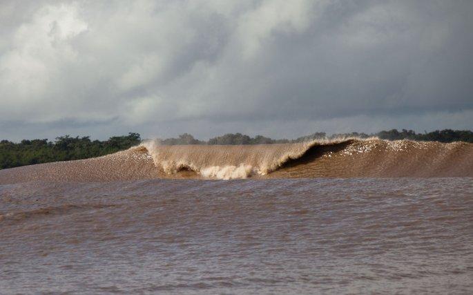 La pororoca,  prend des formes changeantes, elle s'ouvre, déferle, s'adapte au lit de l'Araguari et le modifie! Le rivage du fleuve est dévasté.