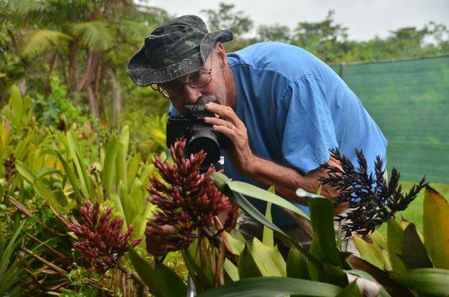 Joep Moonen photographiant une  Aechmea polyantha.