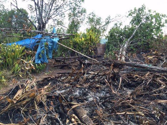 En octobre 2015, un feu d'origine humaine a ravagé ½ hectare de l'inselberg Virginie. Le feu casse le granite dont la couche superficielle est fragile. Les fissures provoquées par les feux favorisent l'installation de plantes invasives. Au niveau de la savane-roche du