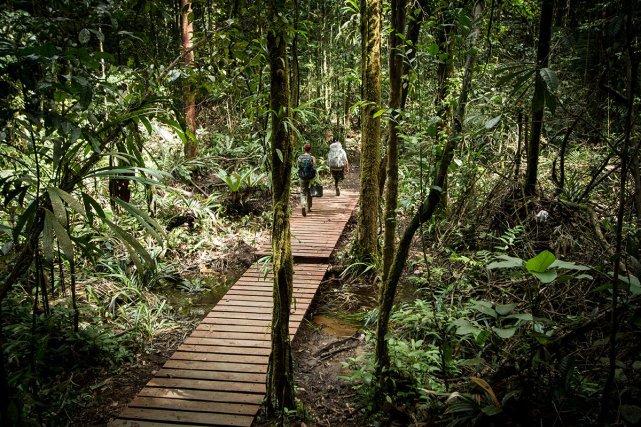 Le chemin est aménagé. Des ponts permettent aux promeneurs de garder leurs pieds secs lors de la traversée des criques.
