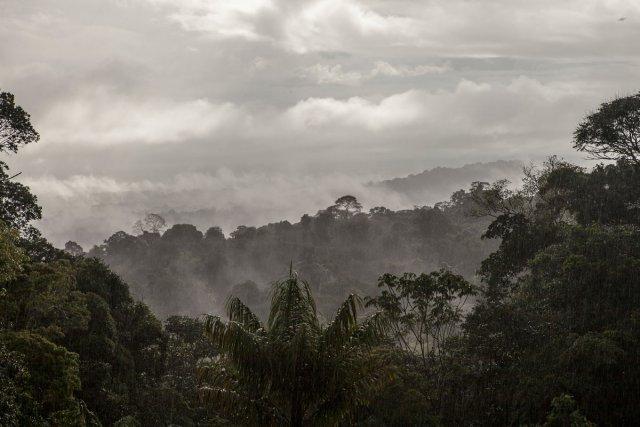 Vue sur La plaine de Kaw au matin